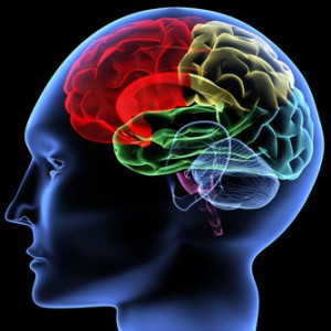 aging n brain